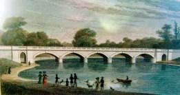 Ponte Serpentine